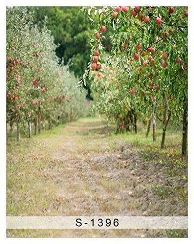 Autumn Fruit Tree Road Photography Studio Backdrop Background
