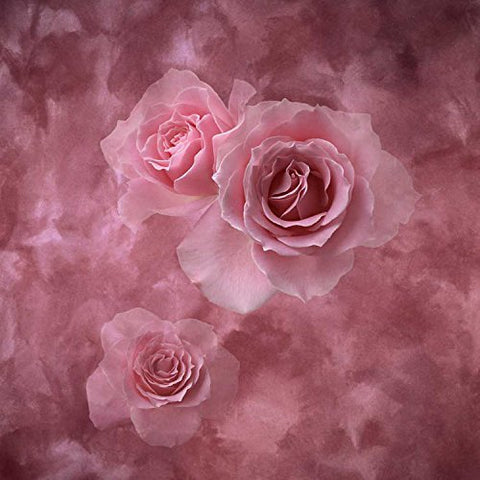 Pink Rose Flower Photography Studio Backdrop Background