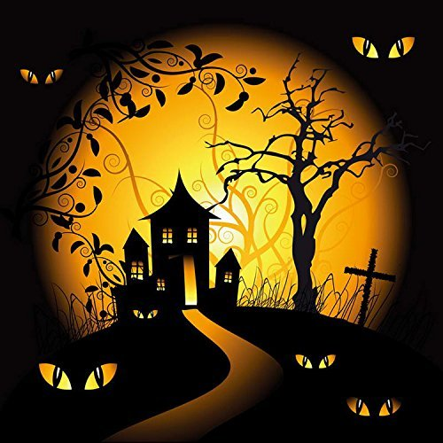 Halloween Hallowmas Pumpkin Eyes Photography Studio Backdrop Background
