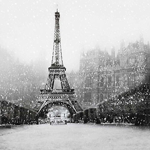 Retro Monochrome Paris Eiffel Tower Photography Studio Backdrop Background