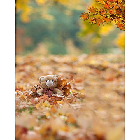 Teddy Bear Maple Fallen Leaves Photography Studio Backdrop Background