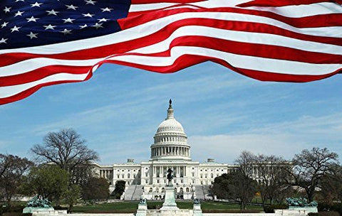 US Washington Capitol Flag Photography Studio Backdrop Background
