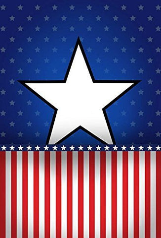 Patriotic American Stars and Stripes Flags Photography Studio Backdrop Background