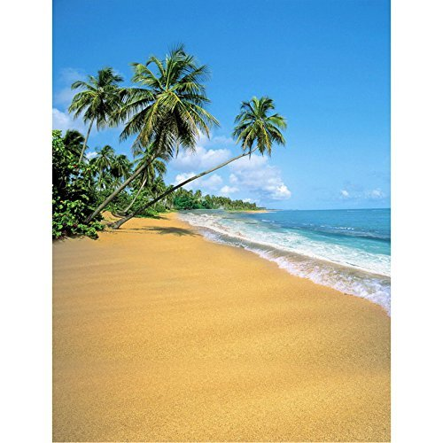 Beach Seaside Sun Seawater Palm Photography Studio Backdrop Background
