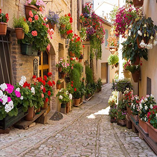 Floral Village Path Alley Lane Photography Studio Backdrop Background