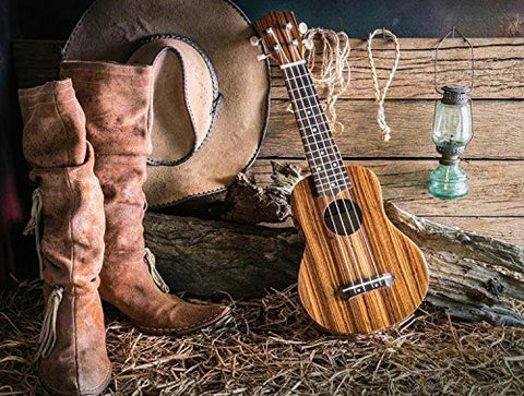 Vintage Cowboy Cap Guitar Boots Photography Studio Backdrop Background