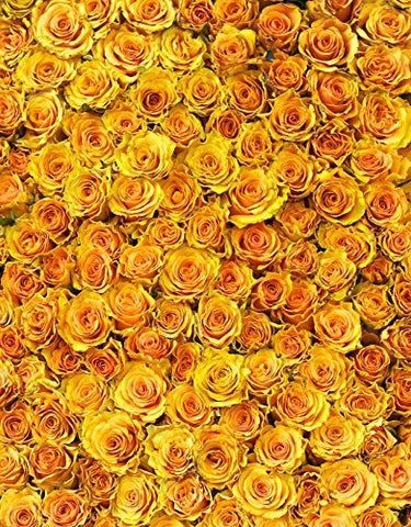 Yellow Flower Rose Romance Photography Studio Backdrop Background