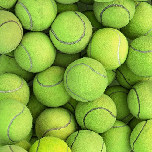 Green Tennis Balls Photography Studio Backdrop Background
