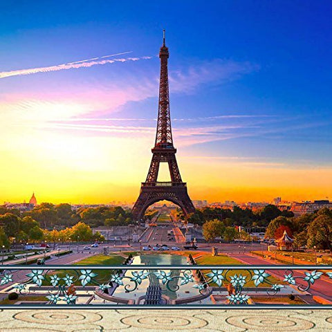 Paris Eiffel Tower Sunset Landscape Photography Studio Backdrop Background