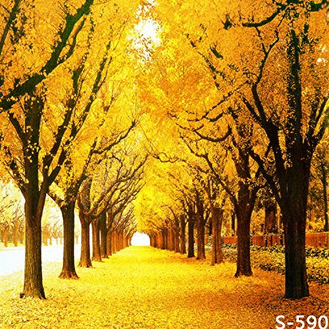 Autumn Maple Fall Yellow Tree Photography Studio Backdrop Background