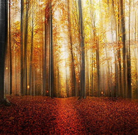 Gold Forest Tree Lane Path Photography Studio Backdrop Background