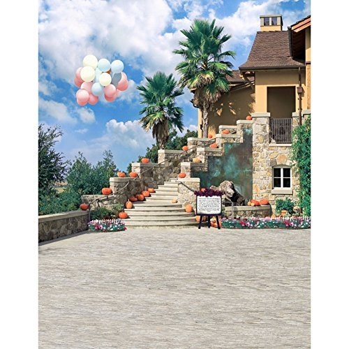 Balloons Villa Seaside Palm Photography Studio Backdrop Background