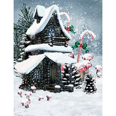 Snow Villa Winter Mushroom Photography Studio Backdrop Background
