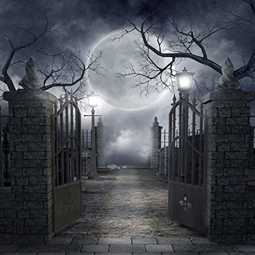 Halloween Hallowmas Moon Night Park Photography Studio Backdrop Background
