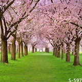 Spring Sakura Tree Green Field Photography Studio Backdrop Background
