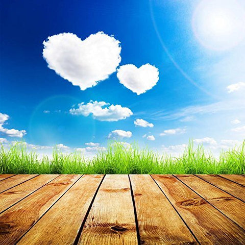 Blue Sky Heart Sunshine Photography Studio Backdrop Background