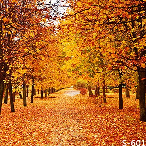 Autumn Fall Maple Yellow Tree Leaves Photography Studio Backdrop Background