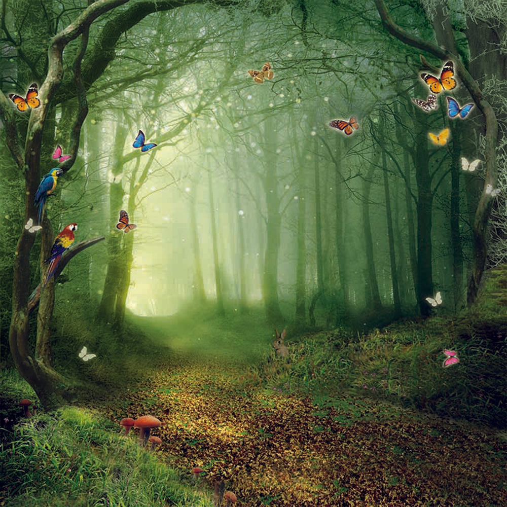 Fairy Tale Alice Wonderland Forest Butterfly Backdrop Photography Studio Background
