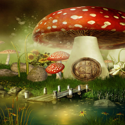 Fairy Tale Alice Wonderland Mushroom House Backdrop Photography Studio Background