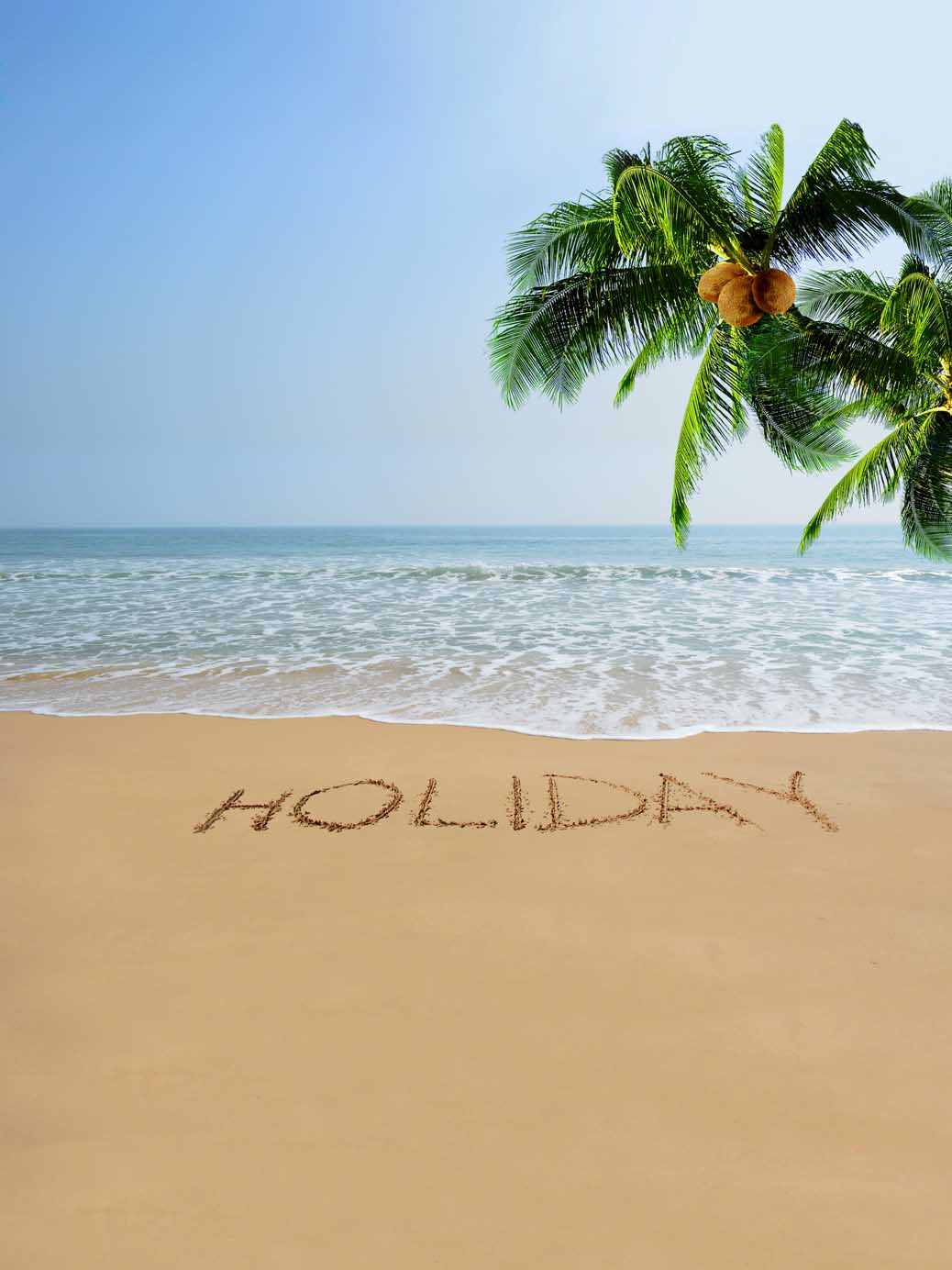 Coconut Trees Seaside Beach Holiday Backdrop Studio Background