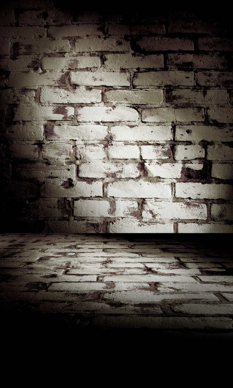 Old Brick Wall Backdrop Photography Studio Background