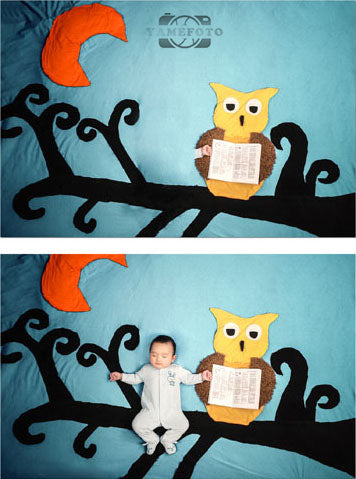 Cartoon Owl Black Branch Moon Baby Backdrop Photography Studio Background