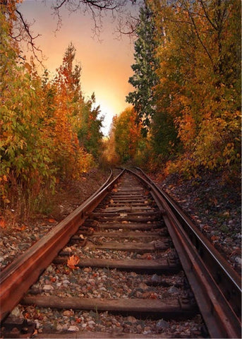 Railway Yellow Leaf Trees Fall Autumn Outdoor Scenic Backdrop Photography Studio Background