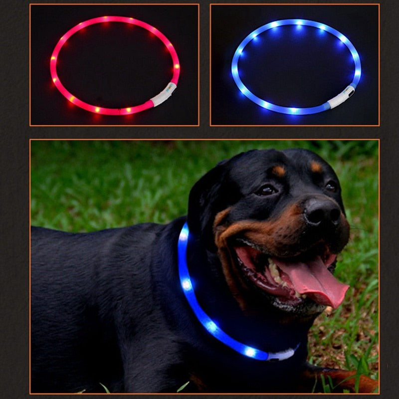 USB Rechargeable Night Safety Warning Illuminated  LED Pet Collar  Dog Adjustable Silicone Collar Cut to Resize