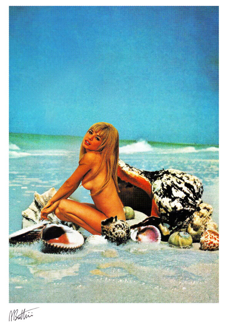 Summer - Madbutt | Australian Collage Artist & Fine Art
