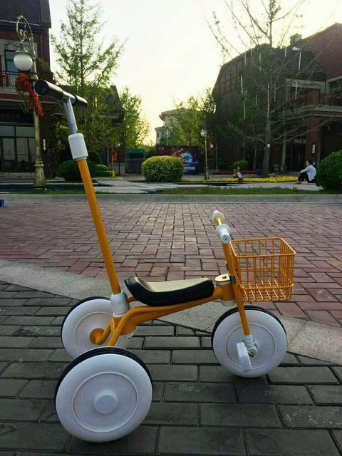 Tricycle Bicycle (3 Colors)