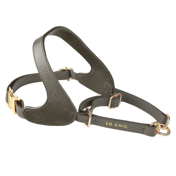 Harness - Cognac Brown-Petsochic
