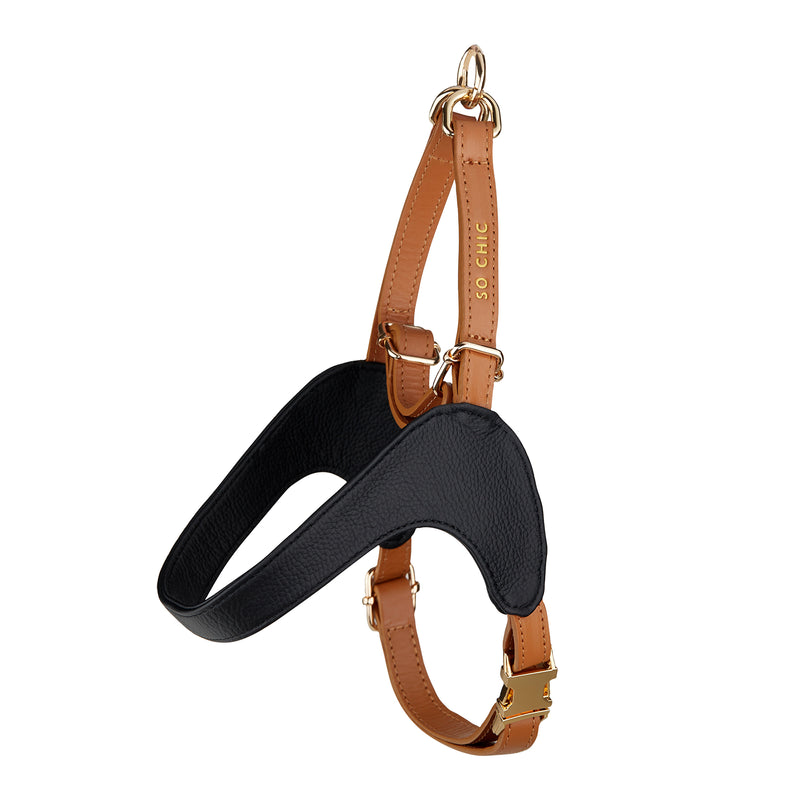 Harness - Black & Brown-Petsochic