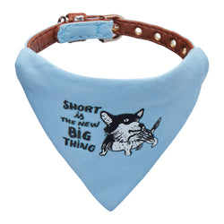 "Tiny dog collar - ""Small is the new big thing""-Petsochic"