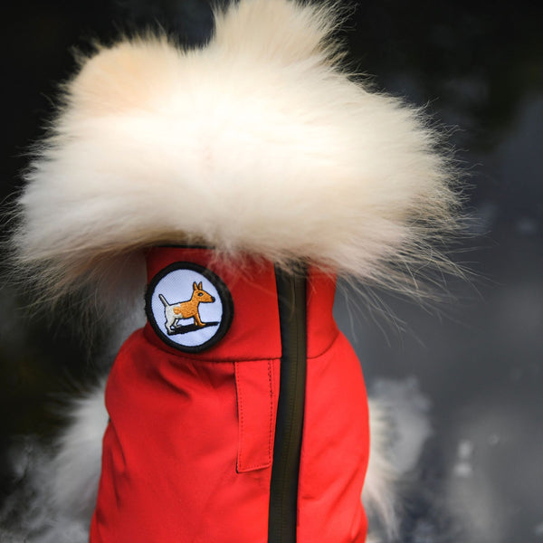 """Warm so chic"" dog winter jacket - Red-Petsochic"