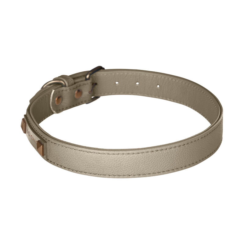 Dog collar - Taupe Éternel-Petsochic