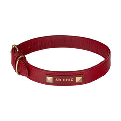 Dog collar - Magnetic Red-Petsochic