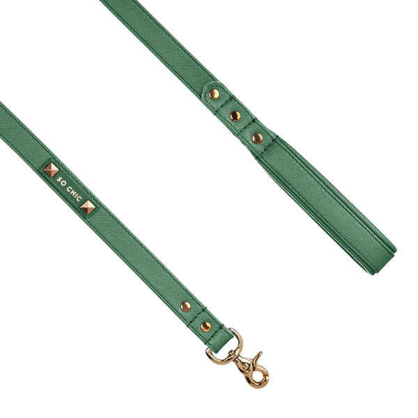 Dog leash - Forest Green-Petsochic