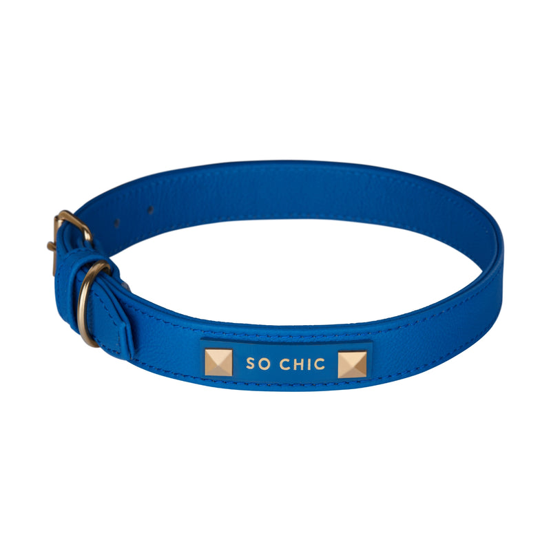 Dog collar - Royal Blue-Petsochic