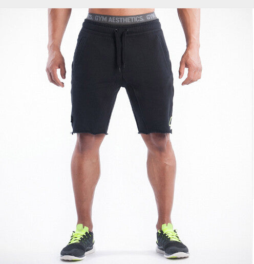 2016 Top Quality Men Casual Brand Gyms Fitness  Shorts Men Professional Bodybuilding Short Pants Gasp Male