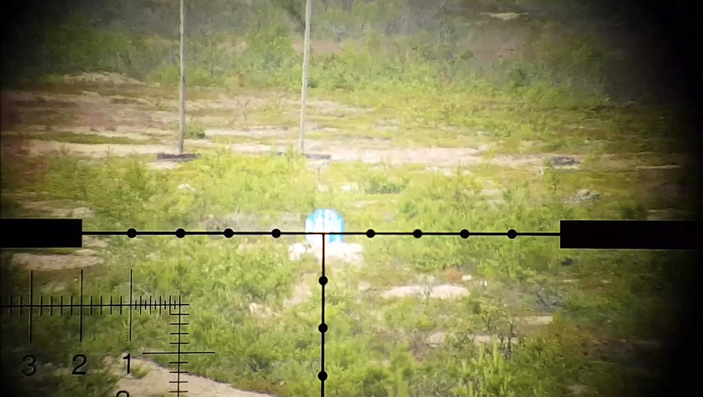 "Simultaneous ""volley fire"" shot on same target - done by +50 sniper rifles"
