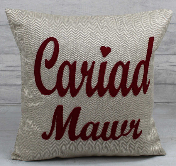 Cariad Mawr Cushion / Big Love Cushion