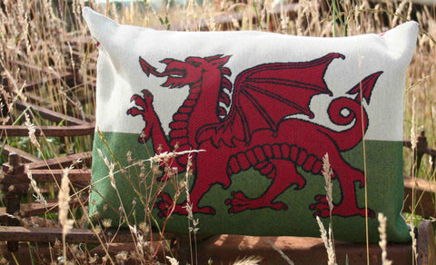 Red Dragon Cushion