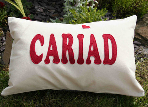 Cariad / Love Cushion