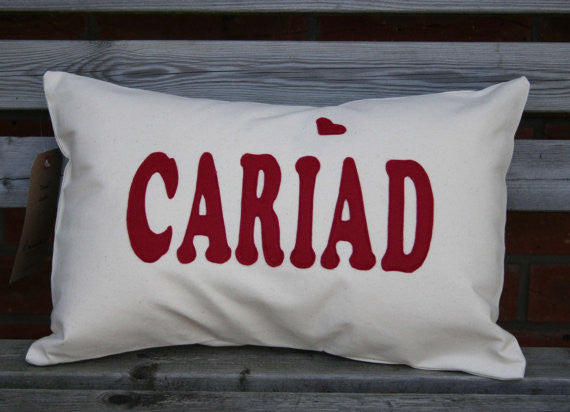 Cariad Cushion
