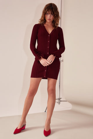 Wanderer Mini Dress
