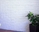 Blemished White Brick Slips
