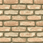 Antique Light Grain Brick Slips