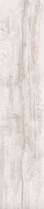 vintage-silver-birch-wood-effect-tiles
