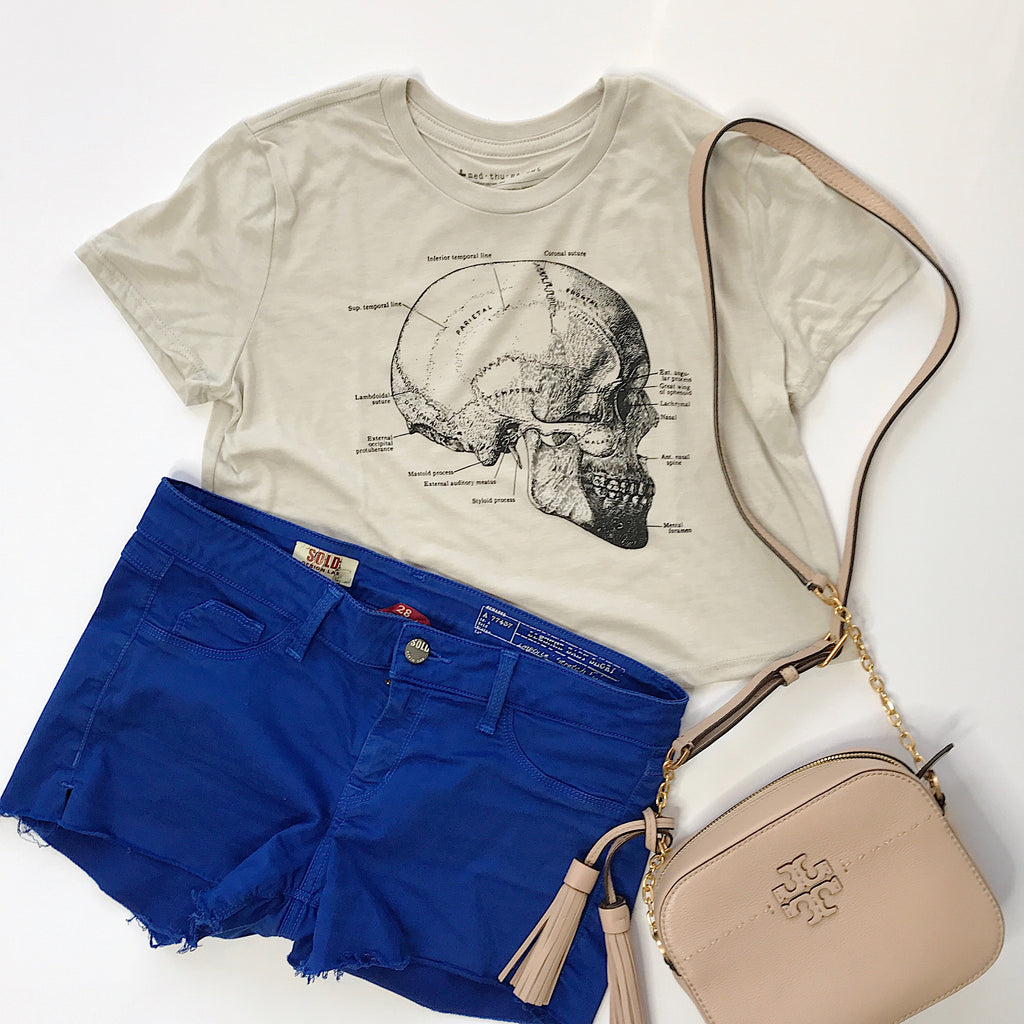 Vintage Anatomical Skull Crop