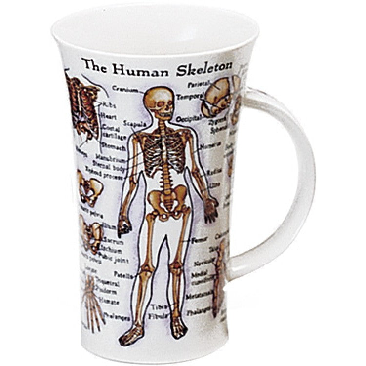 Skeleton Anatomy Mug